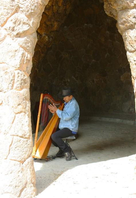musiker ny